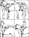 how to mount a horse coloring page