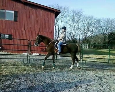 me riding Elvis